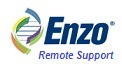 Enzo for Remote Support